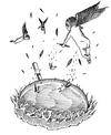 サムネイル:フライパン by.Tatsuya